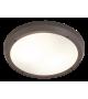 Plafoniera de exterior Alvorada - 8049 Rabalux, E27, 2x20W, gri antracit